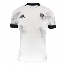 MAILLOT RAYÉ 19/20 ADULTE